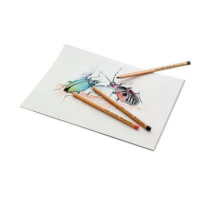 Faber Castell Pitt Pastel Pencil Sample Artwork